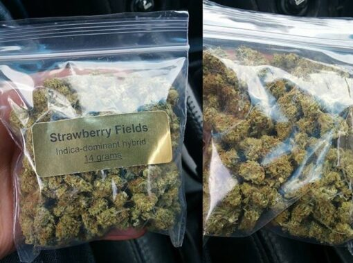 Cheap Weed Online Promotional Sales